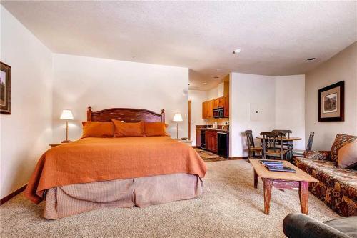 Adorable 1 Bedroom - Main Stn 1210 - Breckenridge, CO 80424