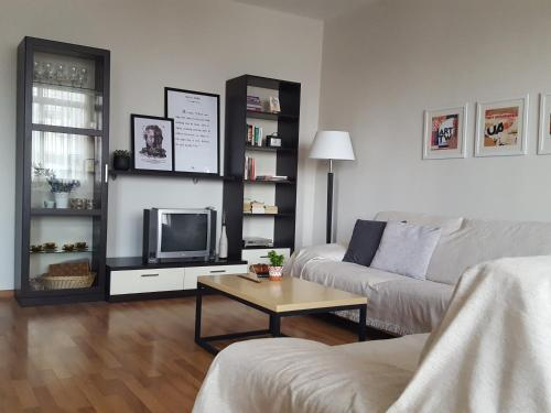Spacious Apartment In Tirana