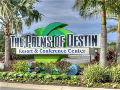 Palms Resort 1916 By Realjoy