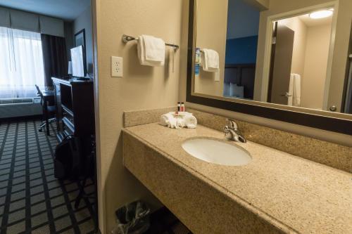 Baymont Inn & Suites Detroit Airport Romulus