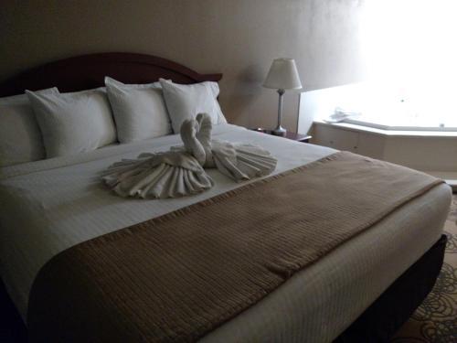 Best Western Elko Inn Photo