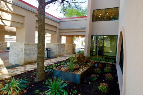 Ramada Austin South photo 10