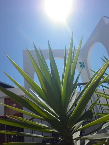 Maison Du Soleil Photo