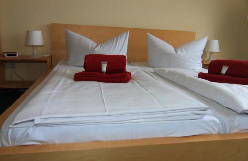 Hotel Comenius photo 34