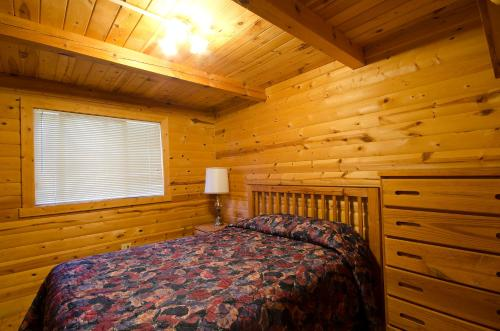 Saddle Pocket Cabin - Lead, SD 57754