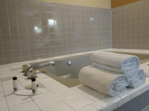 Baymont Inn & Suites Bowling Green Photo