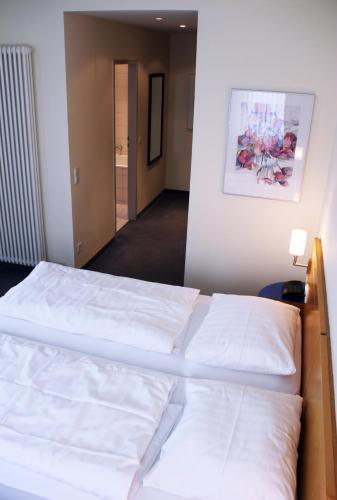 Hotel Am Fasangarten photo 3