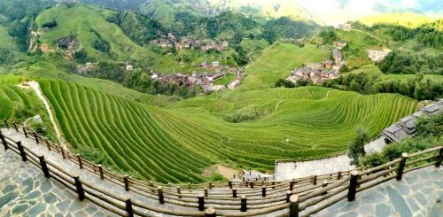 Rice View Villa Photo