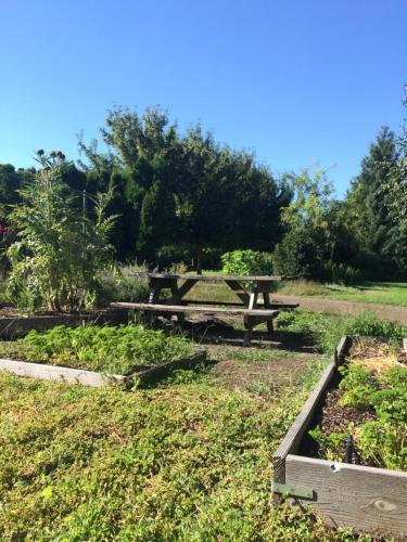 Village Green Resort and Gardens