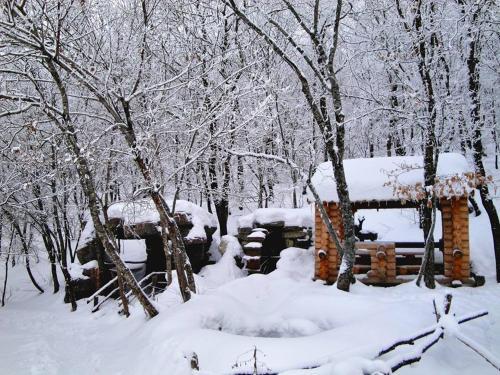 Altiagac Cennet Bagi