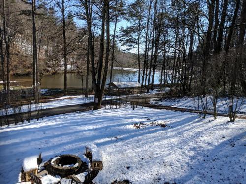 Lab-adore Lake - Ellijay, GA 30540