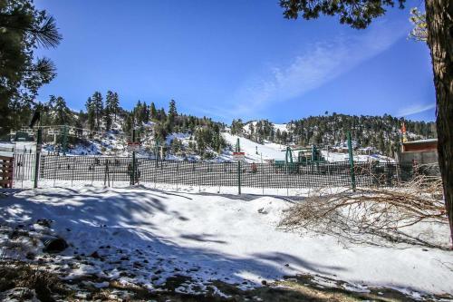 Bear Mountain Backyard Combo #919 Photo