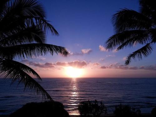 Waipouli Beach Resort F201 Photo