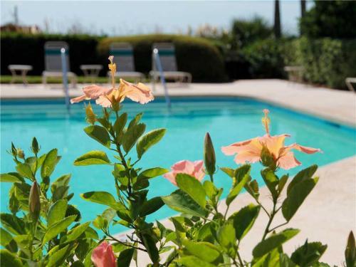 Seagrove 6-D Villa Photo