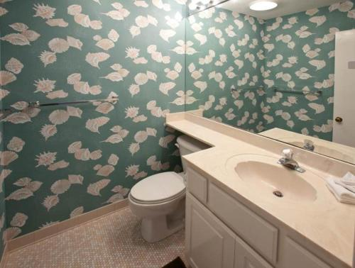Sandhill Crane 16 Holiday home Photo