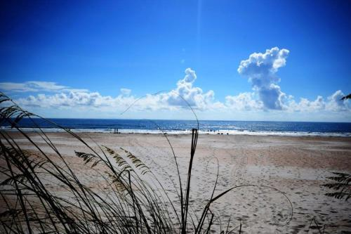 Island Breeze 5 Photo
