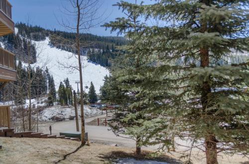 Red Hawk Lodge #2212 Condo