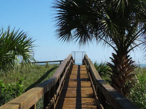 Ocean Beach Oceanfront 501 Photo