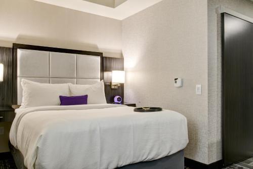 Luminn Hotel Minneapolis An Ascend Hotel Collection Member - Minneapolis, MN 55401