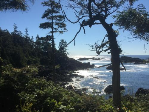 Anchorage Suite - La Mer Inn - Ucluelet, BC V0R 3A0