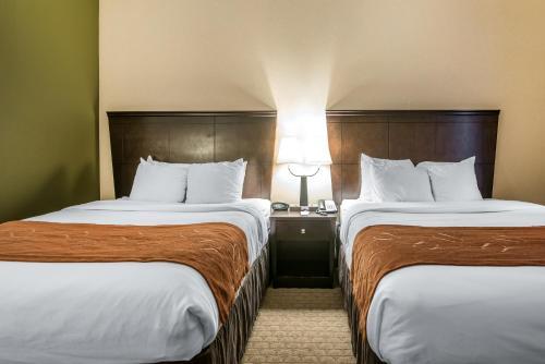 Comfort Suites Vestal Photo