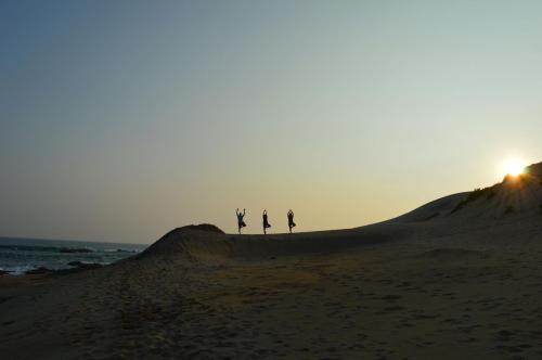 Back of Beyond   Dune Camp Yala