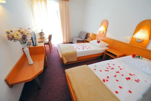 Triple Room Sinj 14466b