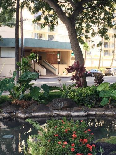 Bride Waikiki - Honolulu, HI 96815