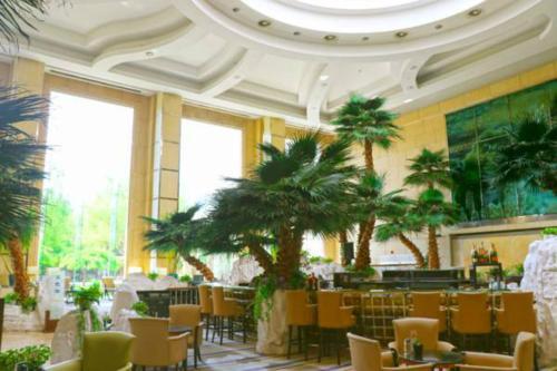V-Continent Wuzhou Hotel photo 57