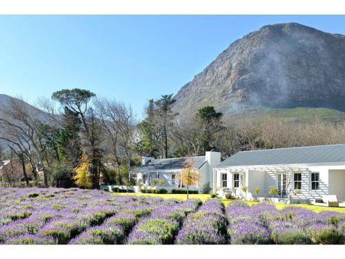 Lavender Farm Guest House Photo