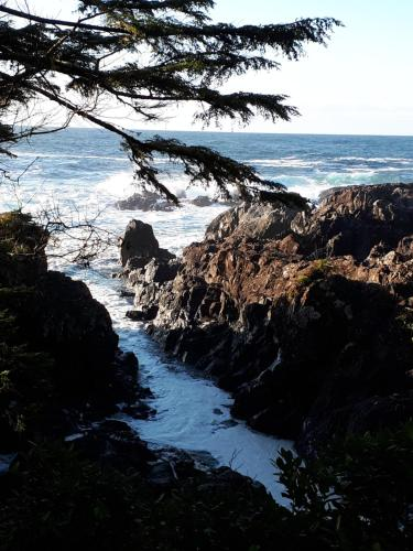 Odyssey Shores Guest Suite - Ucluelet, BC V0R 3A0
