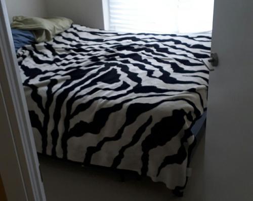 Beautiful Room For Rent In Solaris Condo