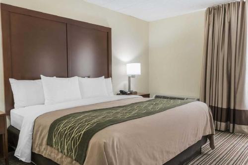 Comfort Inn - Pocono Mountain