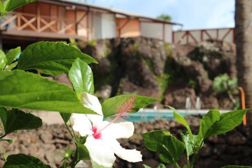 Hotel Hotu Matua Photo