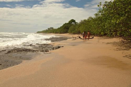 Bahia Langosta 1A Photo