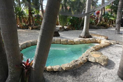 Luxury Tropical Home Near To Beach