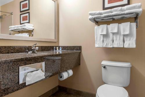 Comfort Inn & Suites Porter - Porter, IN 46304