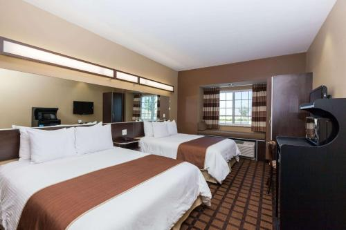 Microtel Inn & Suites by Wyndham Wheeler Ridge Photo