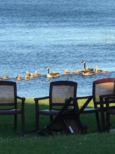 All Sunshines Lake Rental - Grand Rapids, MN 55721
