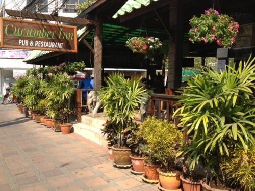 Cucumber Inn Suites And Restaurant