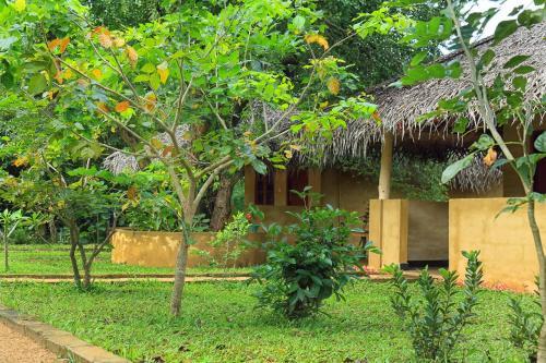 Niyagala Lodge Sigiriya