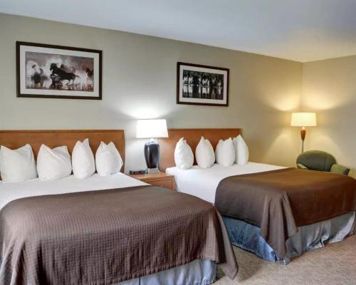 Quality Inn Photo