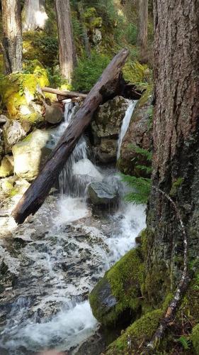 Big Rock Vacation Rental - 202 - Campbell River, BC V9W 1B3