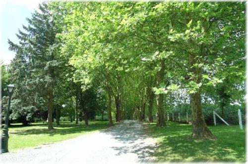 Domaine l'Ecureuil six