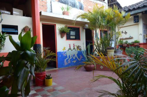 Hostal El Rincón de los Camellos Photo