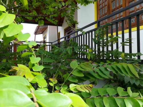 Happy Place - Anuradhapura