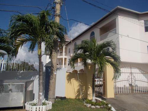 Spring Palm Pent House