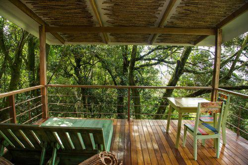 Chayote Lodge Photo