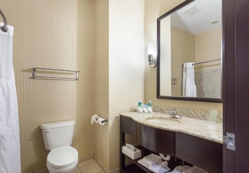 Holiday Inn Express Hotel & Suites Byram - Byram, MS 39272