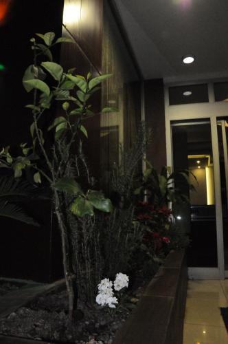 Adana Madi Hotel odalar